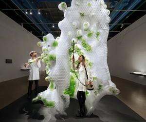 Bio-Digital Sculptures On Show At Centre Pompidou