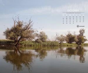 Desktop Calendar – October 2013