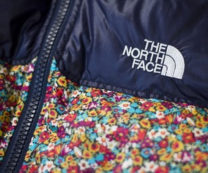 LIBERTY X THE NORTH FACE PURPLE LABEL