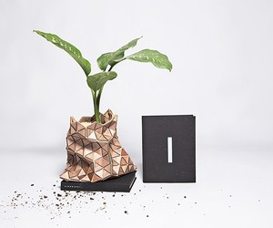 Biodegradable Packaging Upcycles into Planter