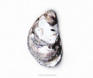 "Pearl (aka JMSN) – ""Closer"" (Full Stream)"
