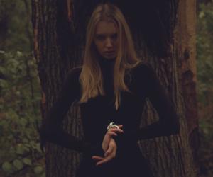 Video: Irina Shipunova / Ronny Kabbot