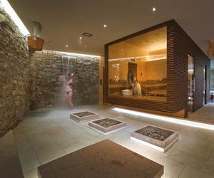 Dhara — Wellness Centre