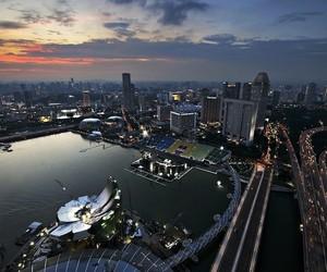 Welcoming Hand of Singapore