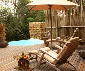 Explore the Spirit of Africa From Tsala Treetop