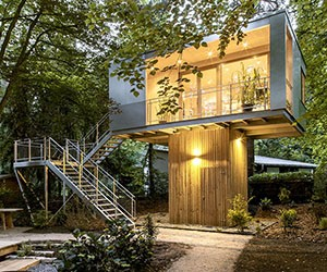 A Full-Time Treehouse in the City