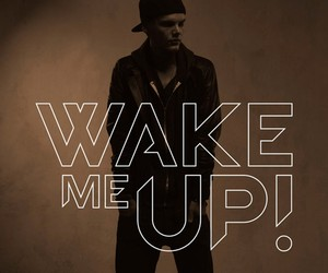 Avicii - Wake Me Up (feat. Aloe Blacc)