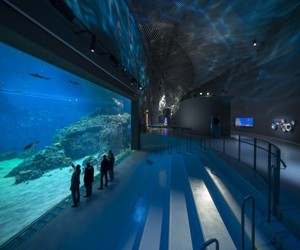 Largest Aquarium In Northern Europe