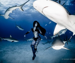Woman Dances with Tiger Sharks