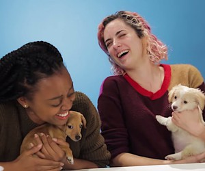 Drunk girls and puppies in a video