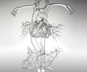 """Heart of Glass"" – Anatomical Glass Sculptures"