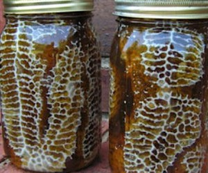 With preserving jars against the dying of bees