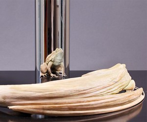 Anamorphic Sculptures Revealed in Cylindrical Flex