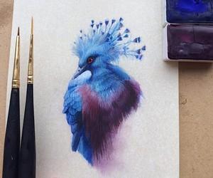 Birds by Birds