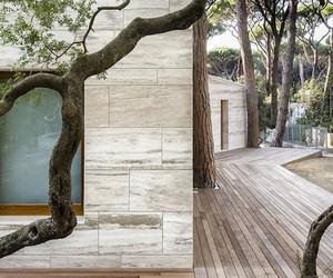 Pine Wood House Renovation