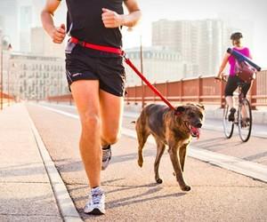 Stunt Runner | Hands-free Dog Leash