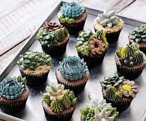These succulent cakes are perfect for those who lo