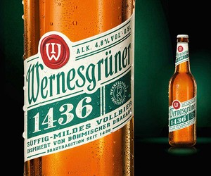 Wernesgrüner 1436: full beer with a new design in